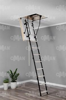 OMAN Mini Polar Чердачная лестница