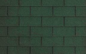CT20 Evergreen Blend / Вечнозеленый