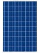 Солнечный модуль TopRaySolar 250P