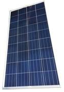 Солнечный модуль TopRaySolar 150P
