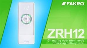 Пульт дистанционного управления ZRH12
